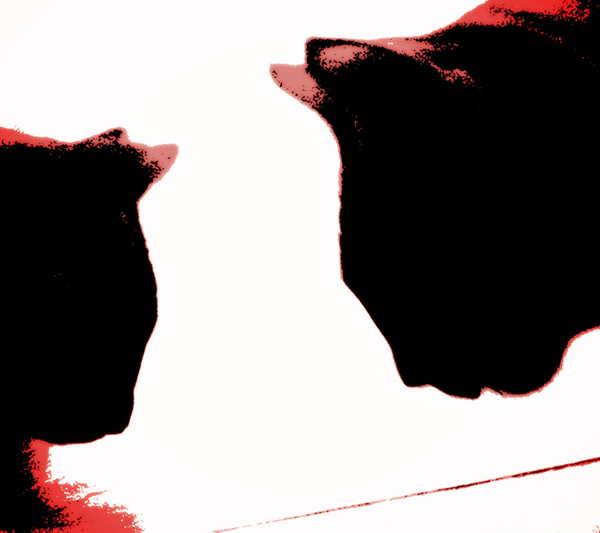 Cat-Sitter-Fulham - Petography
