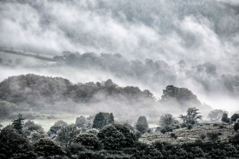 Soft Morning, Dartmoor - Country