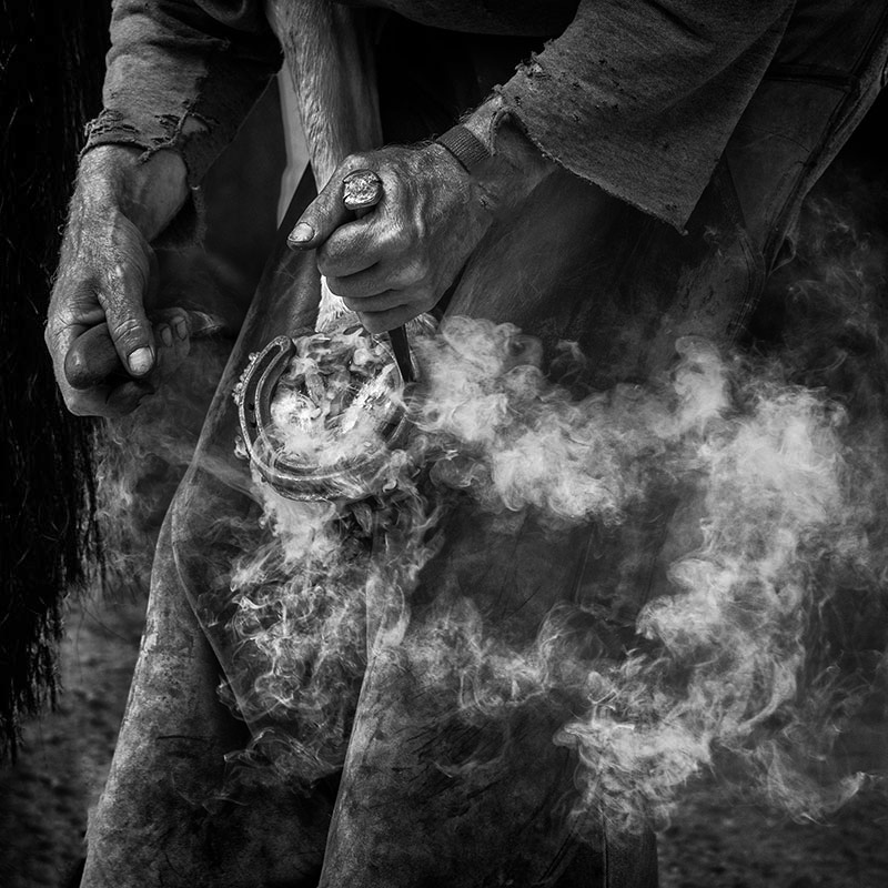 The Farrier IV - Black & White