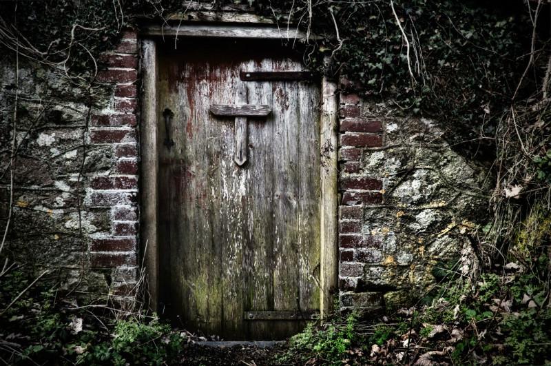 Doorway, Dartmoor - Country