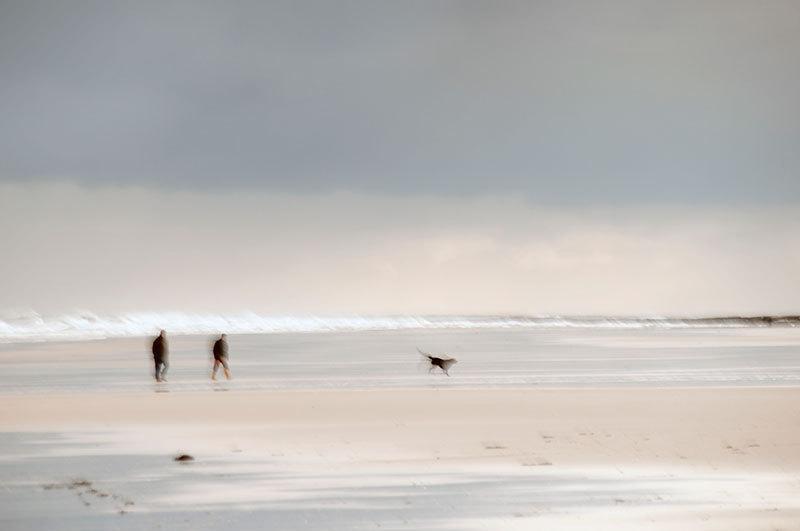 Walking the Dog - Coast