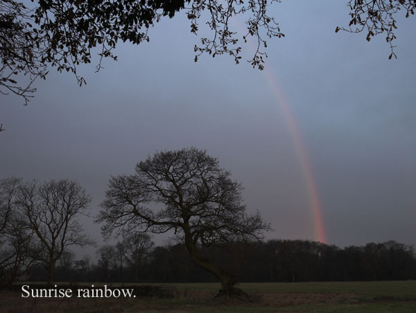 sunrise nr jodrell bank - Rainbows