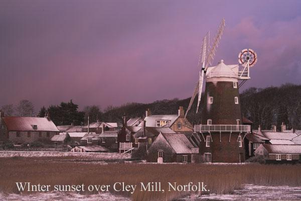 IMG_7531-01 - Norfolk