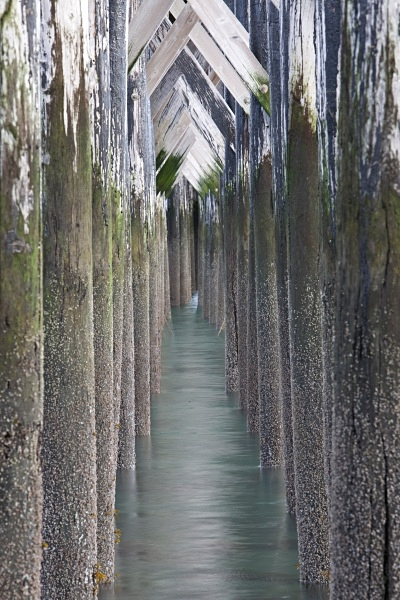 Pier Legs, Haines, IMG_8103 - Cityscapes