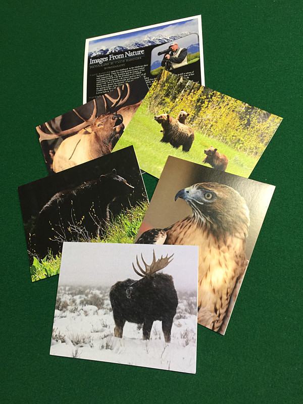 Sample Wildlife Cards 2017 - 3H Note Card Images