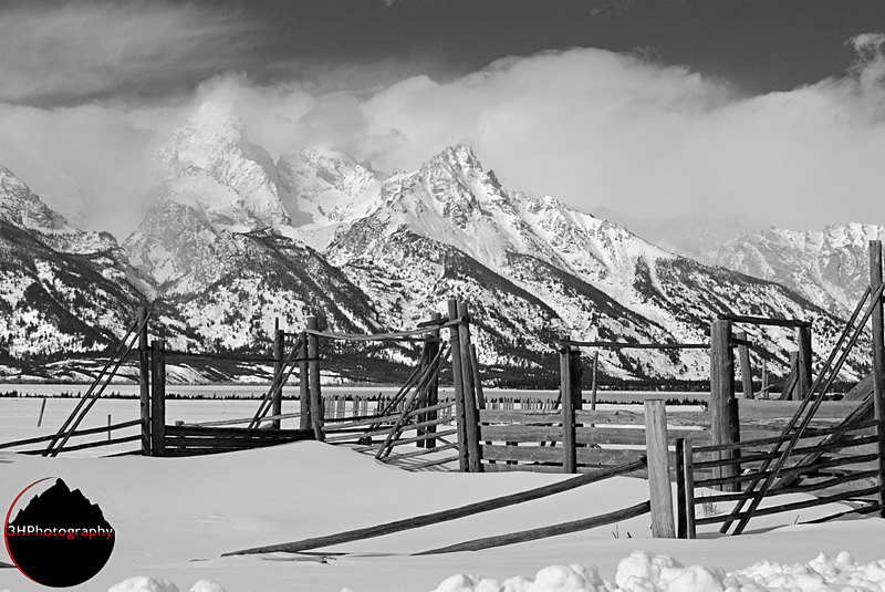 Vintage Teton Loading Corral BW - Christmas Card Images