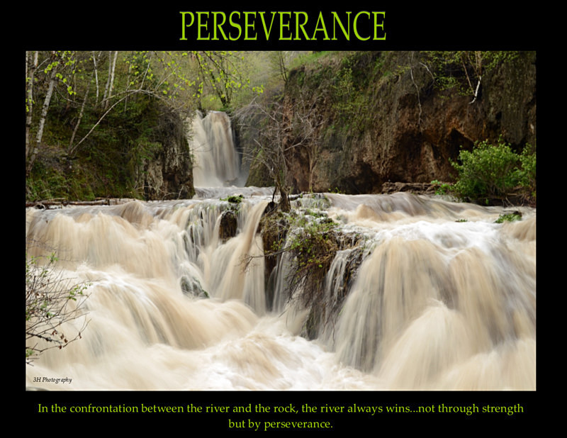 Perseverance Poster with Border JULY 2016 - Inspirational Office & Classroom Art