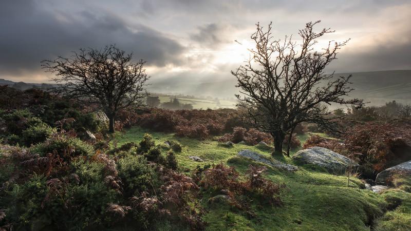 Dartmoor - Landscapes