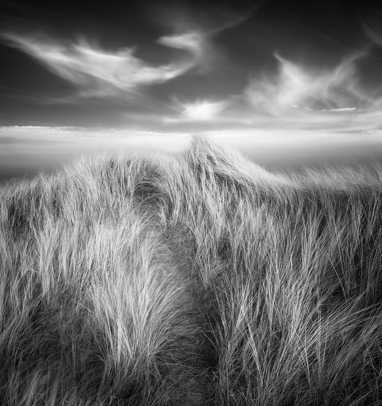 Wind Spirits - Black & White