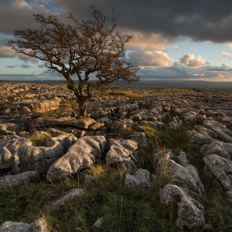 Twistleton Scar End - Landscapes