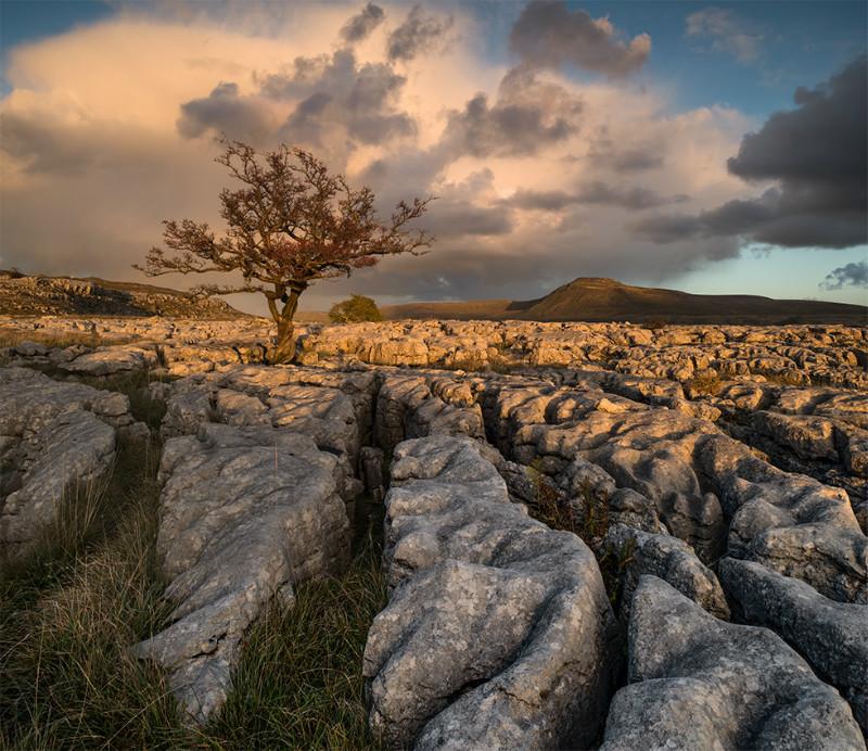 The Dales - Landscapes
