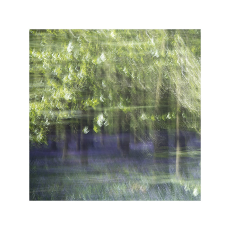 Blurbell - Latest Images