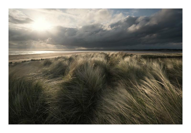 holme dunes national nature reserve
