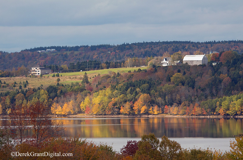 Darlings Island New Brunswick Autumn Foliage - New Brunswick Landscape