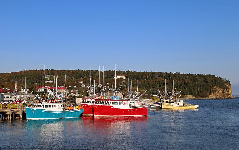 Lobster Boats at Alma Wharf - Boats