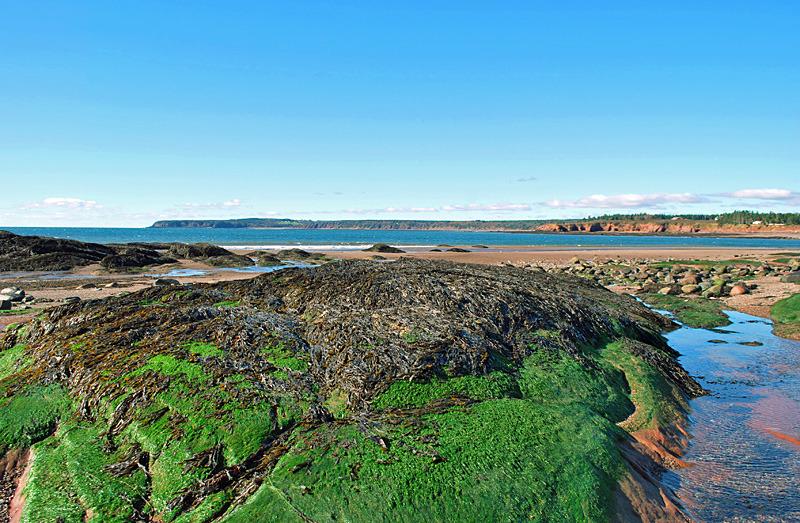 Duck Pond Beach New Brunswick Canada - New Brunswick Landscape