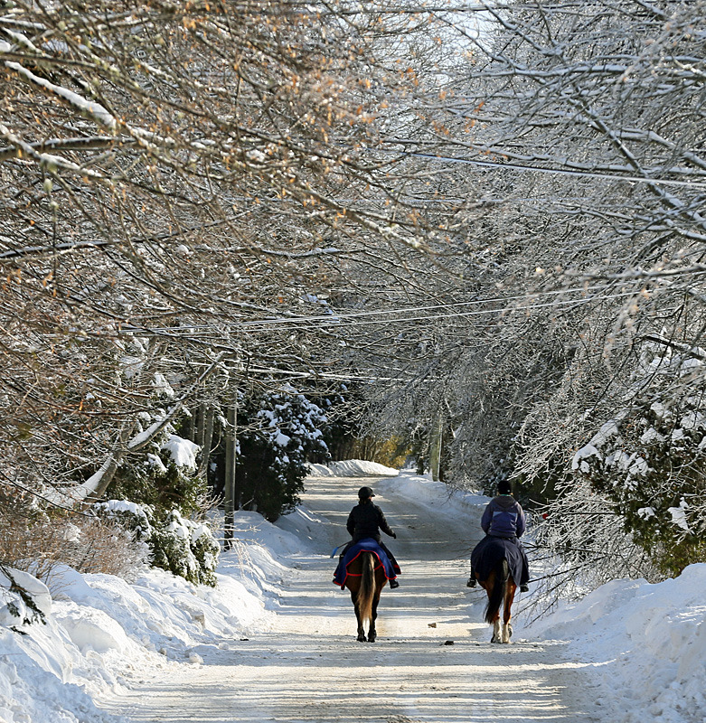 Horseback Riding on Almon Lane - Winterscape