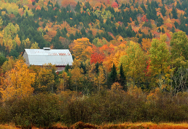 Kings County New Brunswick Canada Autumn Foliage - Old Barns & Buildings