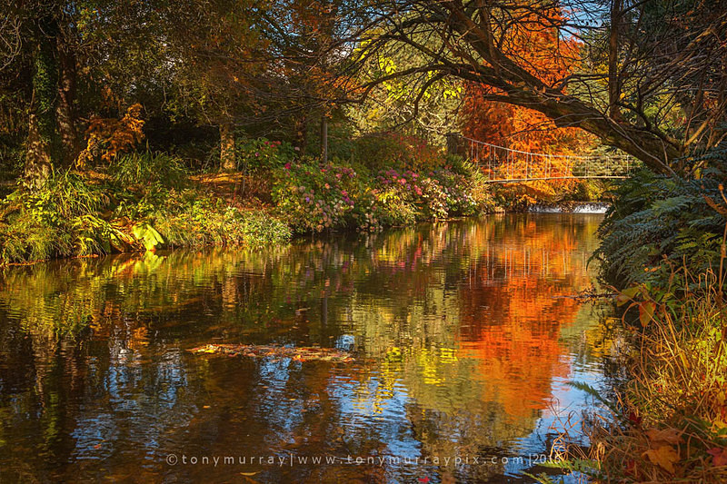 Autumn at Mount Usher Gardens - Wicklow