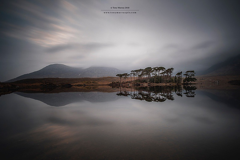 Reflections at Pine Island, Derryclare - Galway