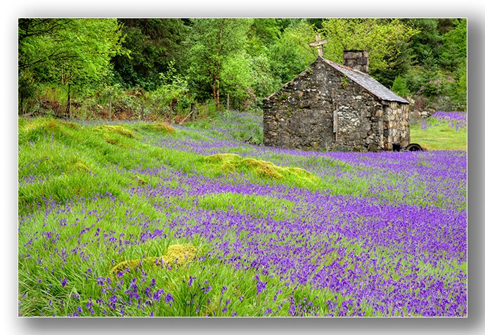 St Johns bluebell church - Highlands & Islands