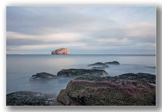 Seacliff to bass rock - Edinburgh & the lothians.