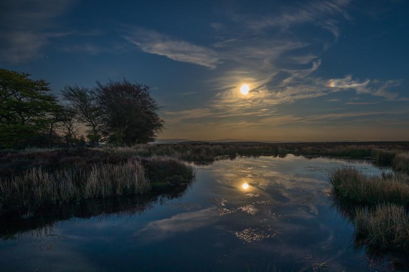 Full moon over Bog Pool, Long Mynd - Moon
