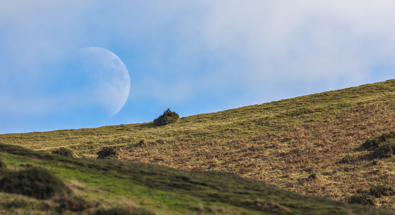 Moonrise over Long Mynd - Moon