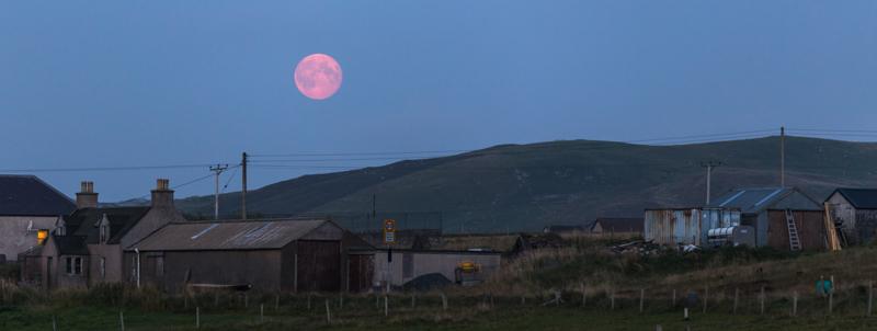 harvest moon Shetland - Moon