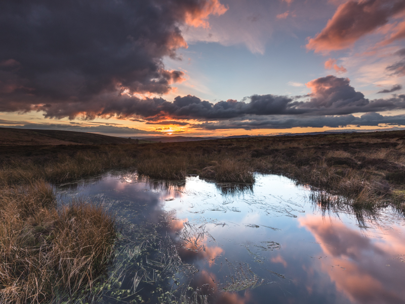 - Upland, Shropshire's Long Mynd & Stiperstones