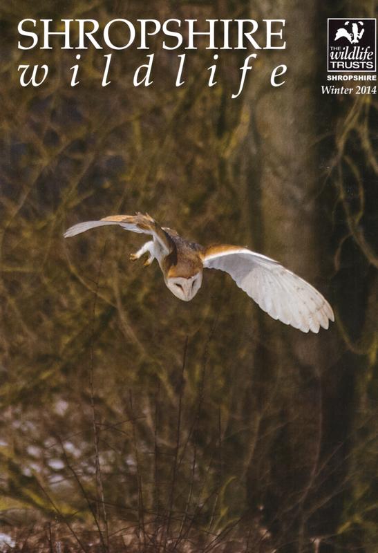 Cover of Shropshire Wildlife Trust Mag - Media & Awards