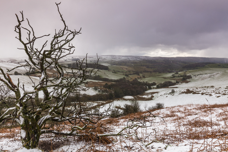 The blizzard, land between Stiperstones and Long Mynd - Upland, Shropshire's Long Mynd & Stiperstones