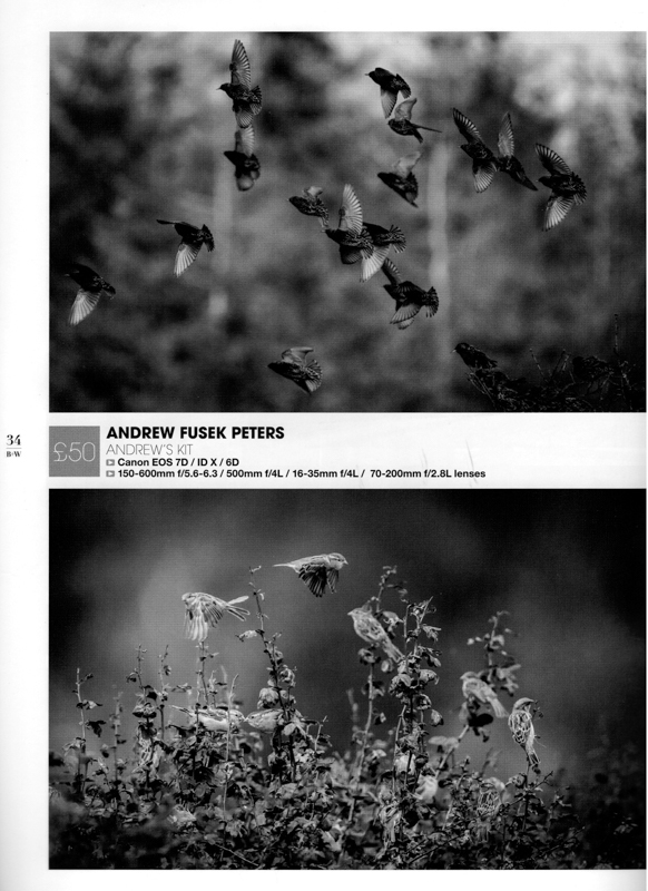 Black & White Magazine portfolio award 1 - Media & Awards
