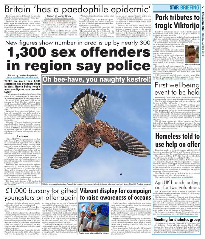 Shropshire Star Kestrel Hunting a bumble bee - Media & Awards
