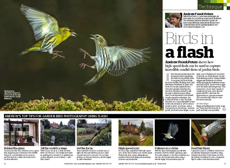 Amateur Photographer Garden Birds Feature 1 - Media & Awards