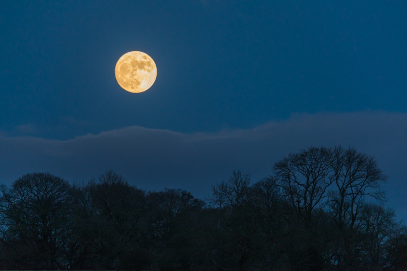 Moon over Totterton - Moon