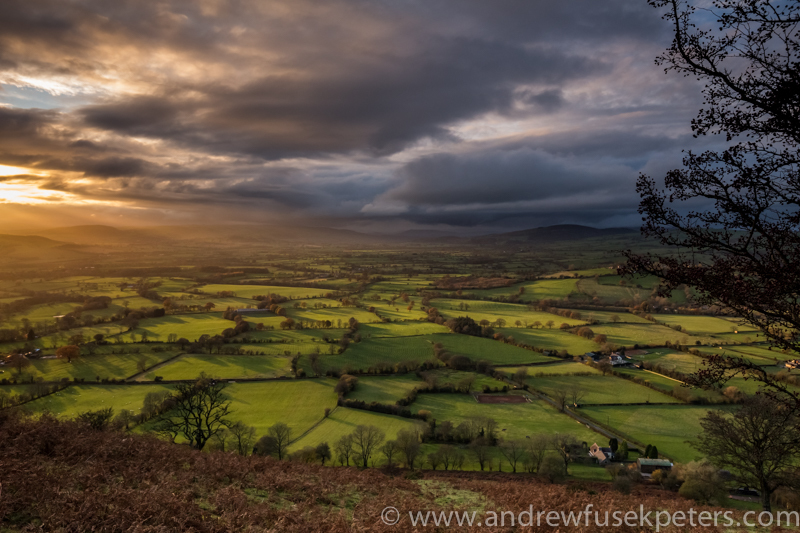 View to Bishop's Castle, Long Mynd - Wilderland, Wildlife & Wonder from the Shropshire Borders