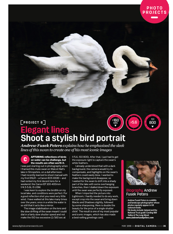 swan feature Digital Camera Magazine - Media & Awards