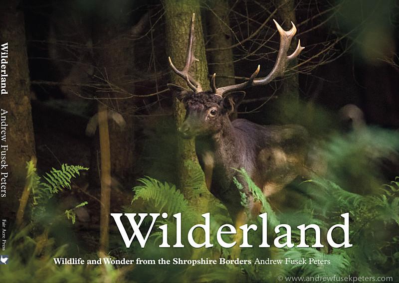 Wilderland cover - Wilderland, Wildlife & Wonder from the Shropshire Borders
