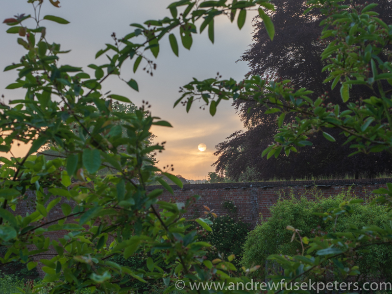 sunrise over the walled garden - Olympus Landscape