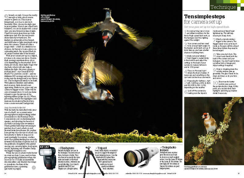 Amateur Photographer garden birds feature 2 - Media & Awards