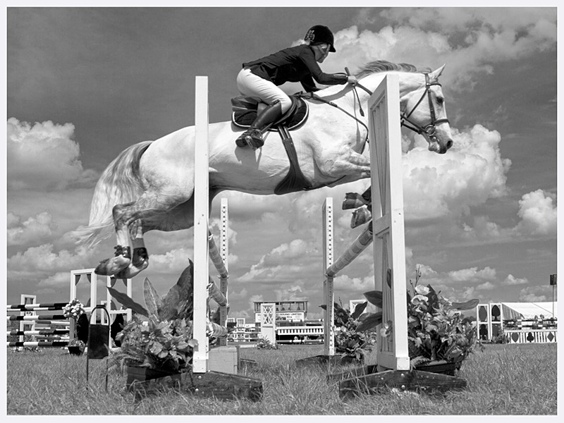 Show Jumping Photography | Cheshire Show | Rachael Edwards Photography