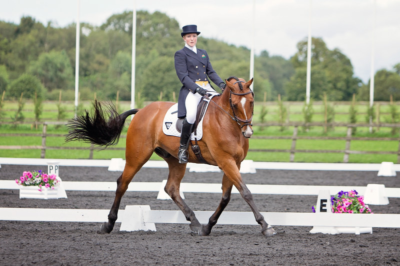 Dressage Photography | Lewes Sussex UK | Rachael Edwards