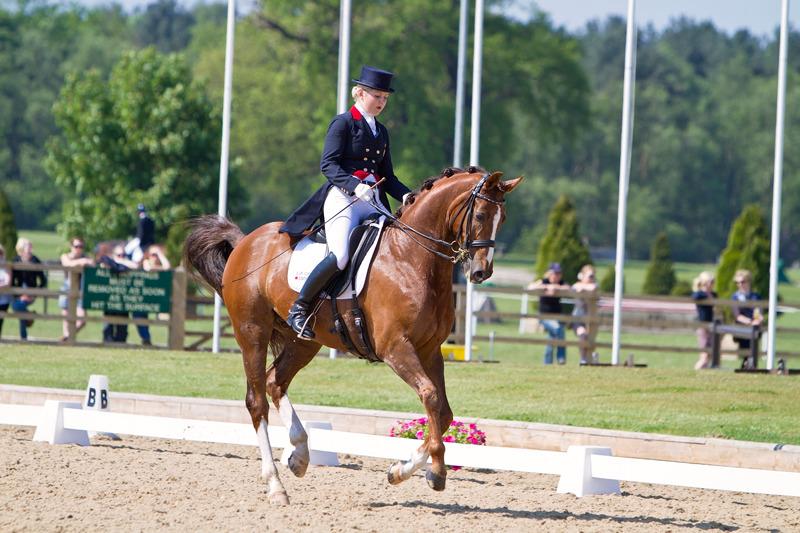 Dressage | Equestrian Photography | rachaeledwardsphotography.co,uk