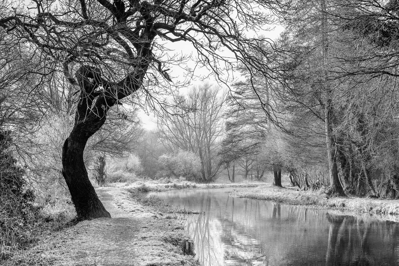 Frost on the Wey - Black and White