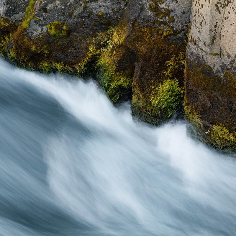 Stream III - Freshwater