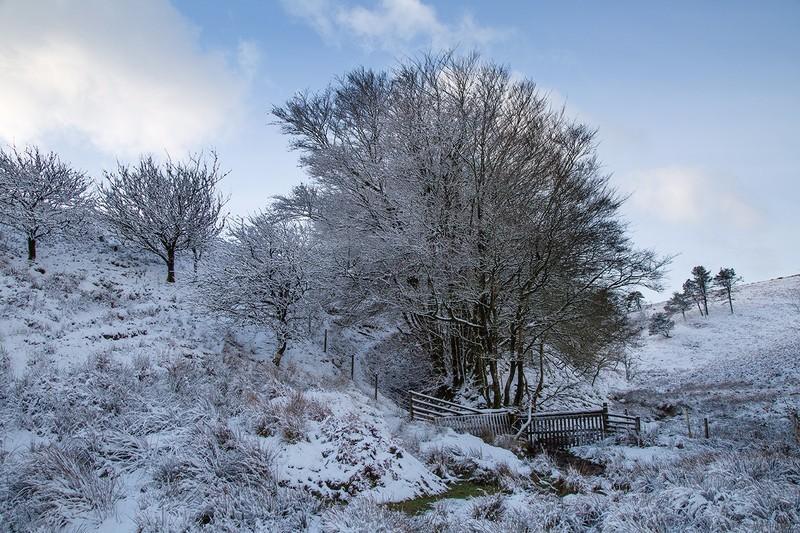 Typical Exmoor winter - Exmoor