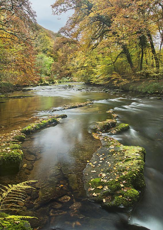 Autumn on The River Barle - Exmoor
