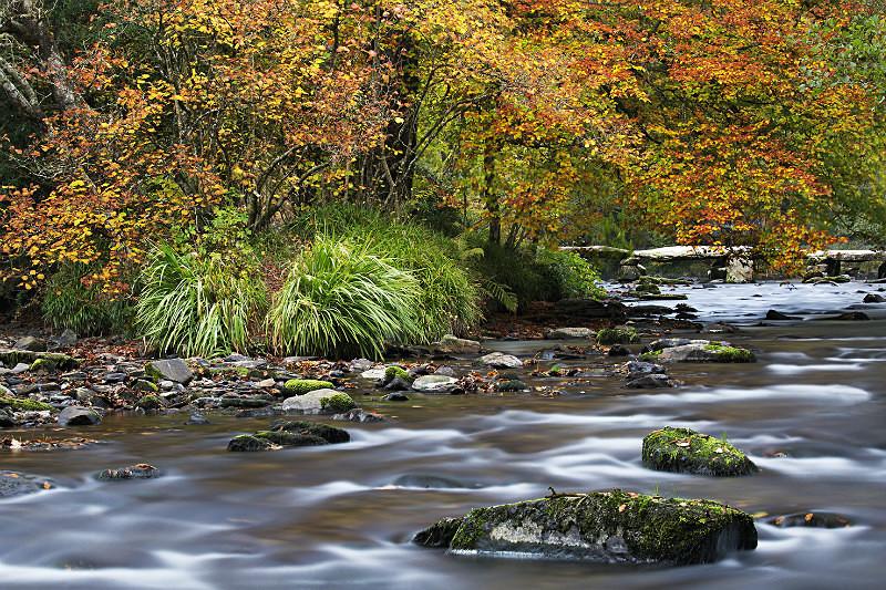 Tarr Steps - Exmoor