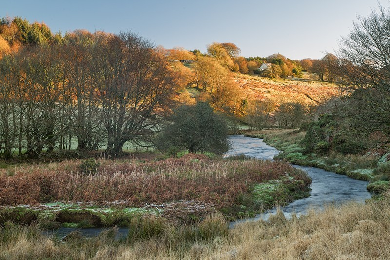 Exmoor River Barle - Latest images